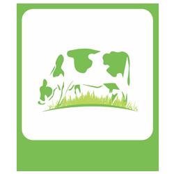 Sistem Informasi Manajemen Data Ternak (SIMDATER)